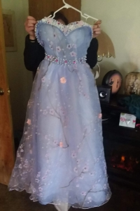 Size 4 Dress for sale California